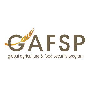 GAFSP_logo_color