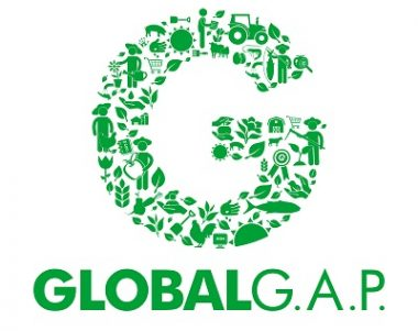 G_Logo_small