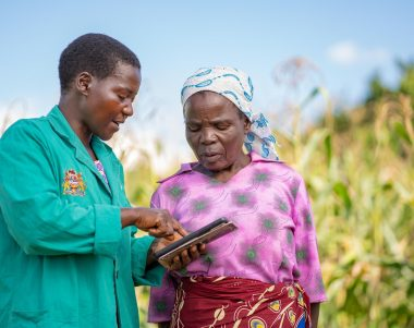 Female African farmer looks at a tablet computer