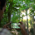Man taking an image of a tree